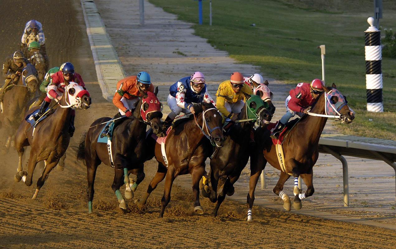 Bahisnow Kazandıran At Yarışı Taktikleri Nedir?